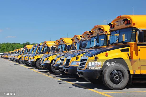 Yellow School Buses Parking