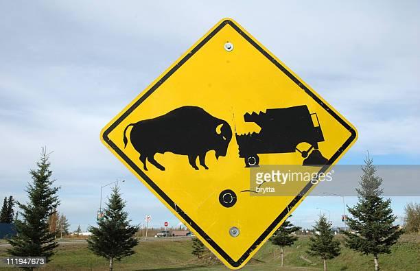 Yellow signpost warning for buffalo collision,Alaska