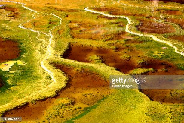 yellow waters of the rio tinto, coloured by dissolved minerals - pareidolia stock pictures, royalty-free photos & images