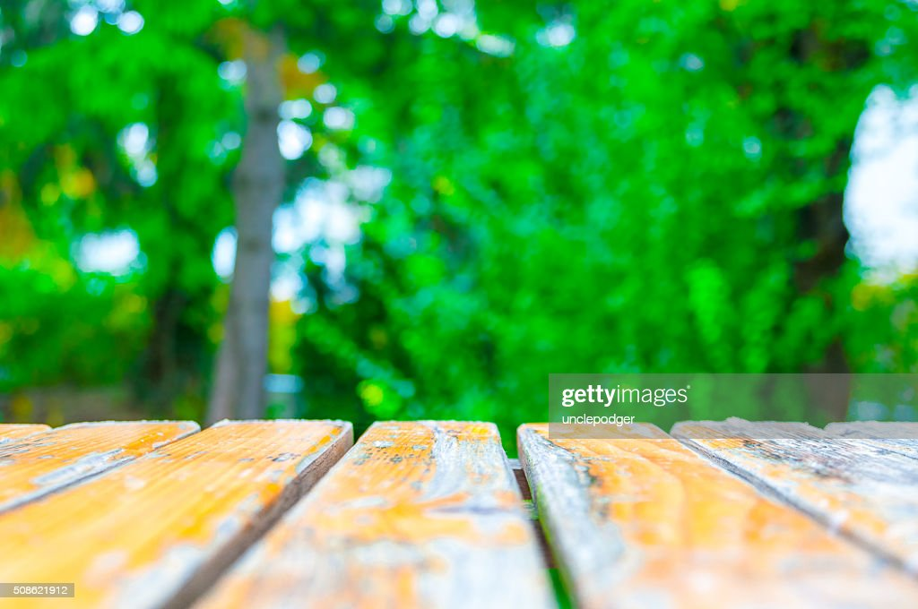 Yellow wooden planks with blurred green foliage : Stock Photo