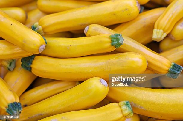 yellow zucchini - marrow squash stock pictures, royalty-free photos & images