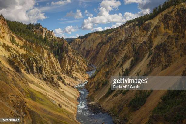 yellowstone canyon river - yellowstone river stock photos and pictures