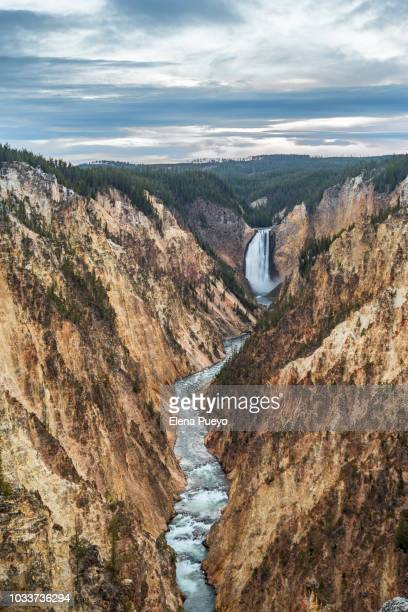 yellowstone grand canyon - yellowstone river stock photos and pictures