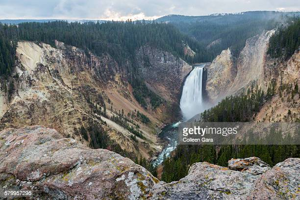 yellowstone lower falls - yellowstone river stock photos and pictures