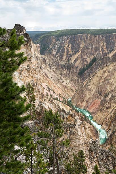 Yellowstone National Park Canyon