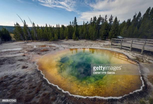 USA, Yellowstone National Park, Morning glory pool