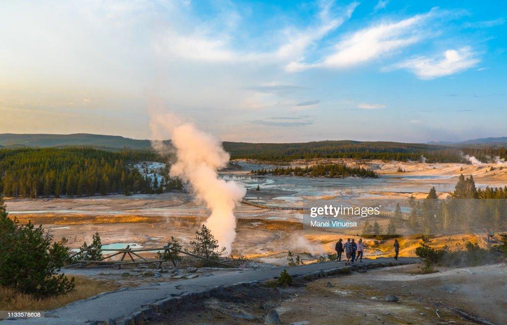 Yellowstone National Park, WY, USA : Stock Photo