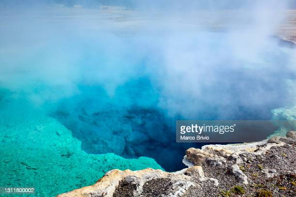 yellowstone national park. wyoming. usa - marco brivio stock pictures, royalty-free photos & images