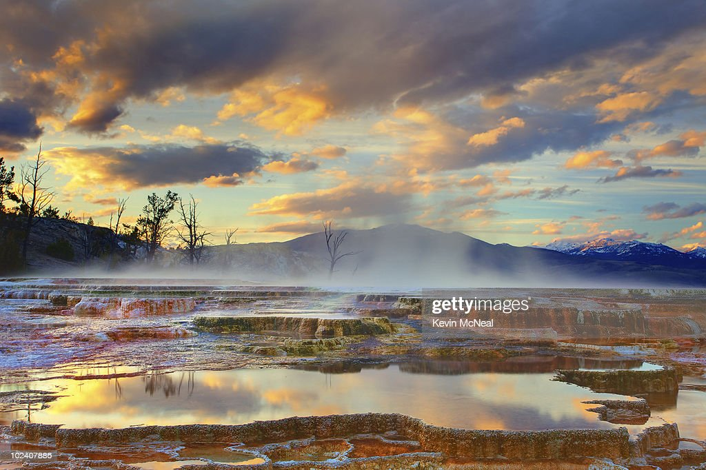 Yellowstone National Park-Mammoth Hot Springs : Stock Photo