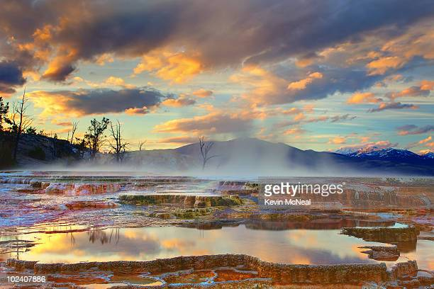 yellowstone national park-mammoth hot springs - yellowstone national park stock pictures, royalty-free photos & images