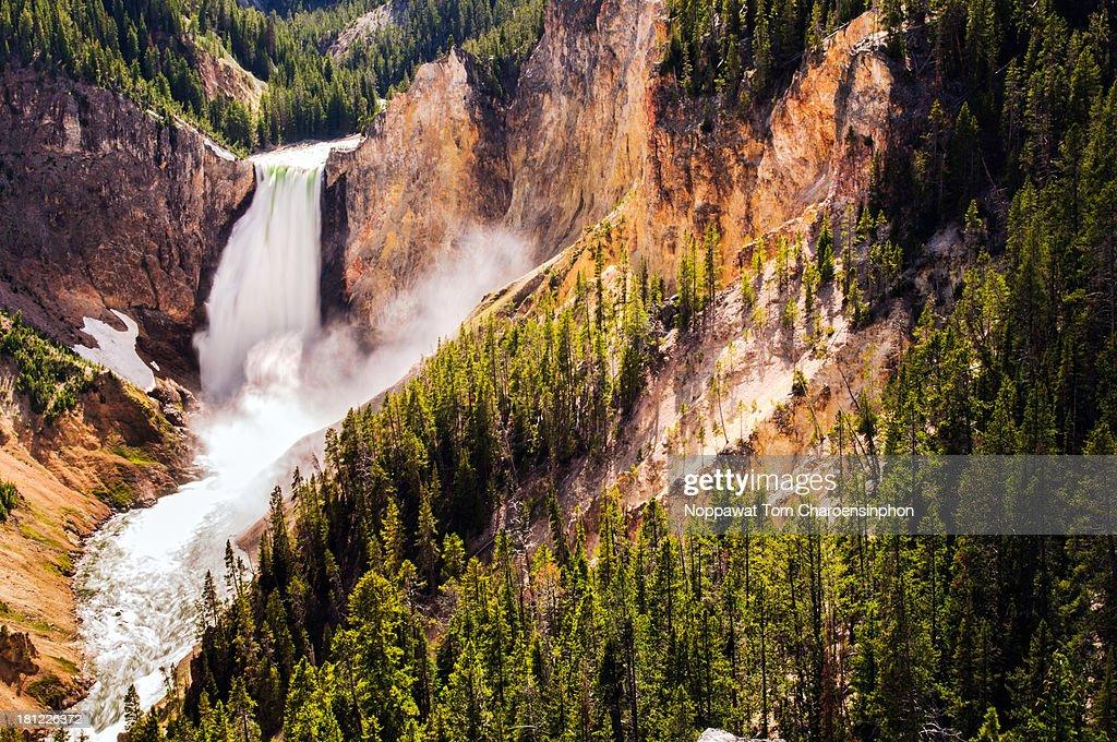 Yellowstone Waterfall : Stock Photo