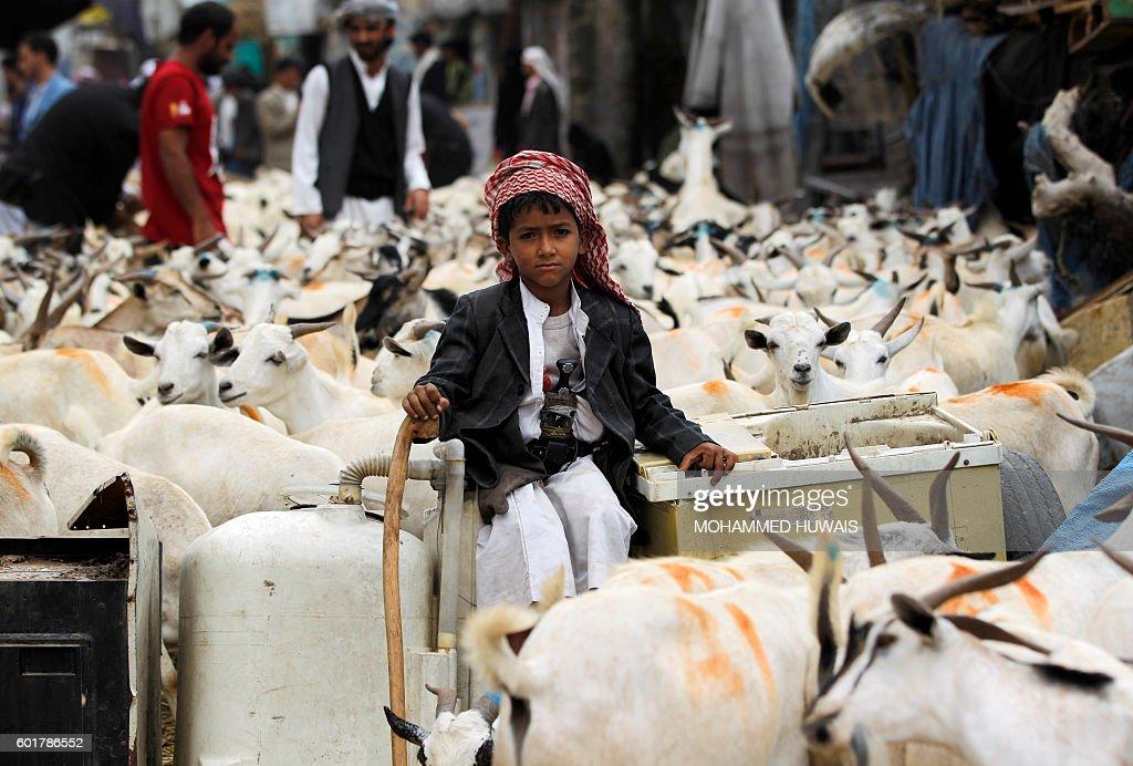 Simple Yemen eid al-fitr feast - yemeni-boy-sits-looking-on-at-a-livestock-market-in-the-capital-sanaa-picture-id601786552?k\u003d6\u0026m\u003d601786552\u0026s\u003d612x612\u0026w\u003d0\u0026h\u003dkIR-MGbQ6lm-A1pE0KYFpKNzZe2iVagbUhMb76GOFyw\u003d  Pic_739145 .com/photos/yemeni-boy-sits-looking-on-at-a-livestock-market-in-the-capital-sanaa-picture-id601786552?k\u003d6\u0026m\u003d601786552\u0026s\u003d612x612\u0026w\u003d0\u0026h\u003dkIR-MGbQ6lm-A1pE0KYFpKNzZe2iVagbUhMb76GOFyw\u003d