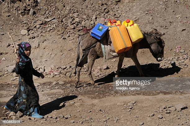 Yemeni girl walks while a donkey carries drinkable water containers in Kavala area of Yemen on December 28 2014 Ibb faces water crisis as Yemen is...