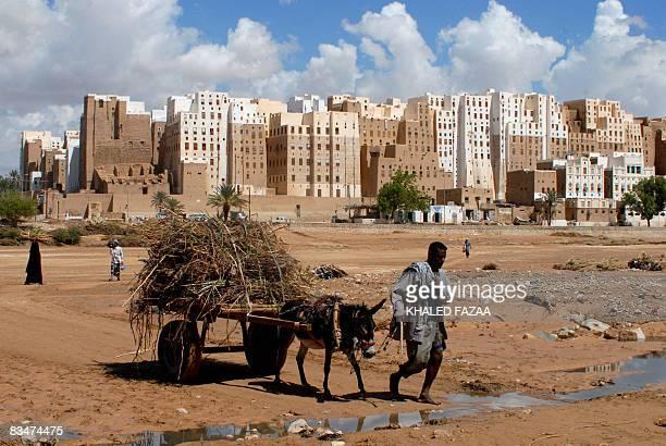 A Yemeni man pulls his donkey cart past the historical city of Shibam in Hadramaut province of eastern Yemen on October 28 2008 President Ali...
