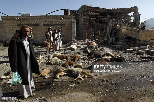 TOPSHOT Yemenis stand near dead animals and a destroyed house following a reported airstrike by Saudiled coalition airplanes in the capital Sanaa on...