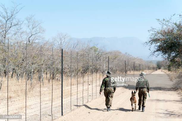 Yenzekile Nozipho Mathebula 27yrs and Tlangelani Everjoy 28yrs with highly trained antipoaching dog Zee undertake a morning patrol along the border...