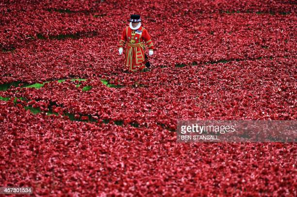 A Yeoman Warder stands amongst the ceramic poppies as Queen Elizabeth II and her husband Prince Philip Duke of Edinburgh visit the Tower of London's...