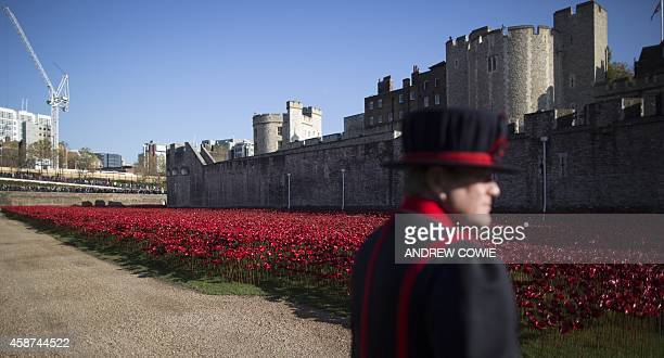 """Yeoman Warder walks past the """"Blood Swept Lands and Seas of Red"""" installation of ceramic poppies by ceramic artist Paul Cummins and theatre stage..."""