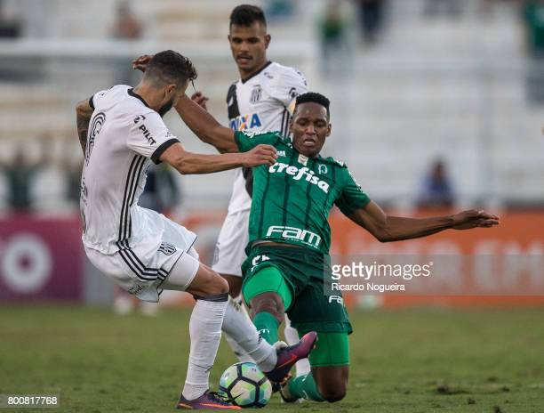 Yerry Mina of Palmeiras battles for the ball with Joao Lucas of Ponte Preta during the match between Ponte Preta and Palmeiras as a part of...
