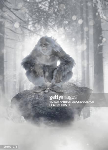 yeti, illustration - bigfoot stock pictures, royalty-free photos & images