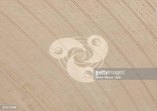 Yin yang symbol crop circle