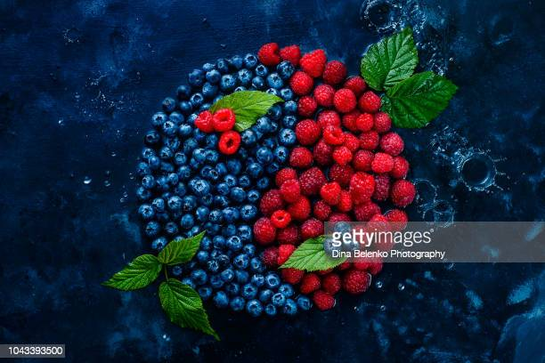 Yin yang symbol made with berries. Blueberries and raspberries on a dark background with water drops. Healthy food balance concept
