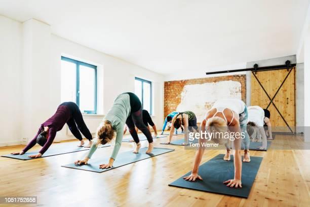 yoga class performing poses together - beugen oder biegen stock-fotos und bilder