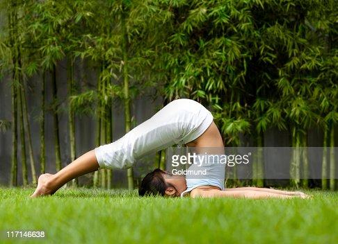 yoga halasana pose highres stock photo  getty images