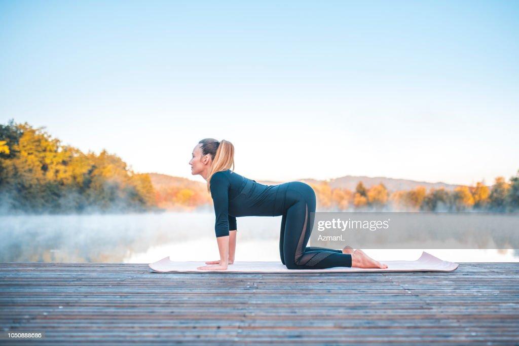 Yoga pose - cow pose (bitilasana) : Stock Photo