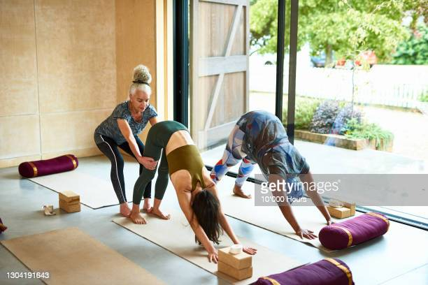 yoga teacher adjusting woman in downward dog position - limb body part stock pictures, royalty-free photos & images