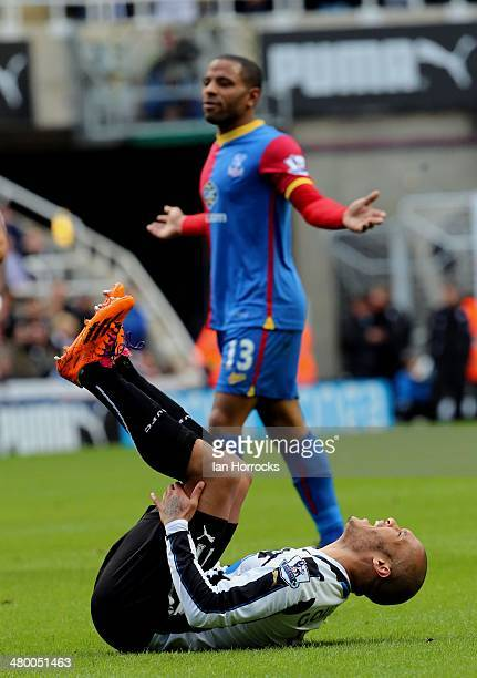 Yohan Gouffran of Newcastle United rolls over after suffering an injury during the Barclays Premier League match between Newcastle United and Crystal...