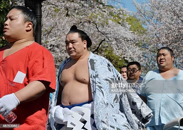 "Yokozuna Harumafuji arrives at a ""honozumo"", a ceremonial one-day exhibition at Yasukuni shrine in Tokyo on April 4, 2014. Sumo wrestlers took part..."