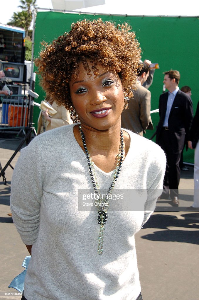 Yolonda Ross during The 20th Annual IFP Independent Spirit Awards - Arrivals in Santa Monica, California, United States.