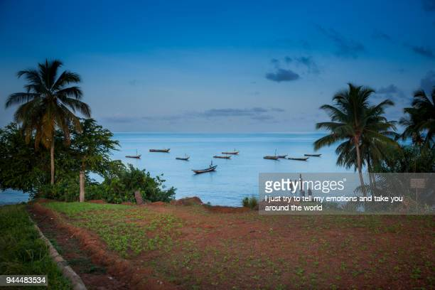 yongoro, sierra leone, africa - freetown sierra leone stock pictures, royalty-free photos & images