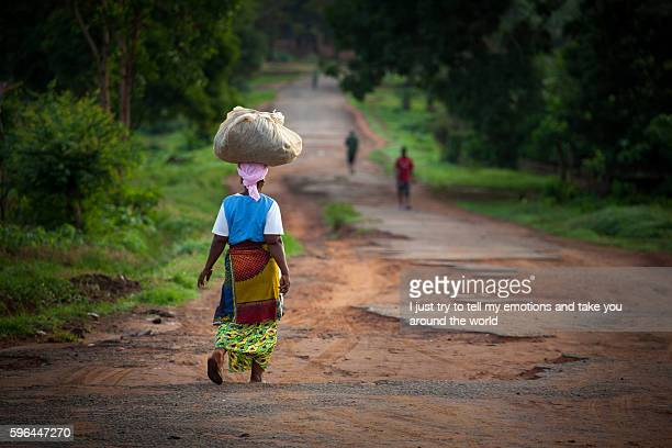 yongoro, sierra leone, west africa - sierra leone stock pictures, royalty-free photos & images