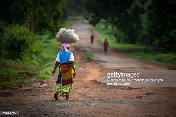 yongoro, sierra leone, west africa - ebola fotografías e imágenes de stock