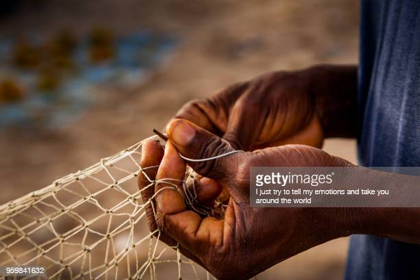 yongoro, sierra leone, west africa - country geographic area stock pictures, royalty-free photos & images