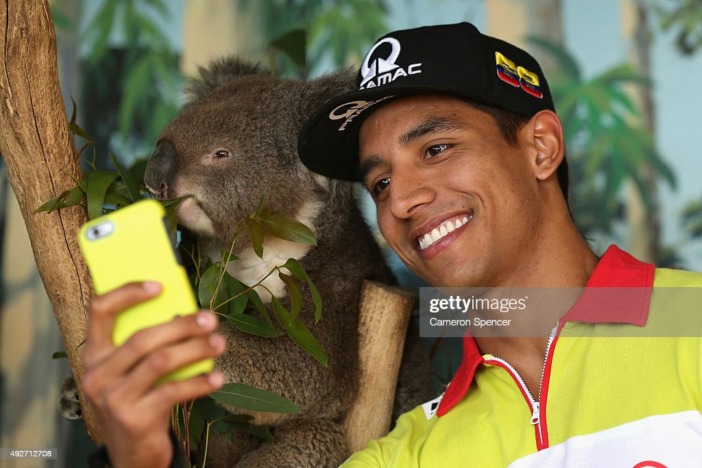 Yonny Hernandez of Octo Pramac Racing poses with a koala at Maru Koala & Animal Park ahead of the 2015 MotoGP of Australia at Phillip Island Grand Prix Circuit on October 15, 2015 in Phillip Island, Australia.