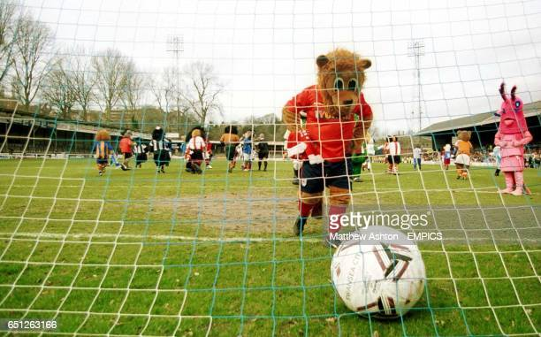 Yorkie the Lion of York City gets the ball from the back of the net during the Battle of the Mascots match at Gay Meadow home of Shrewsbury Town