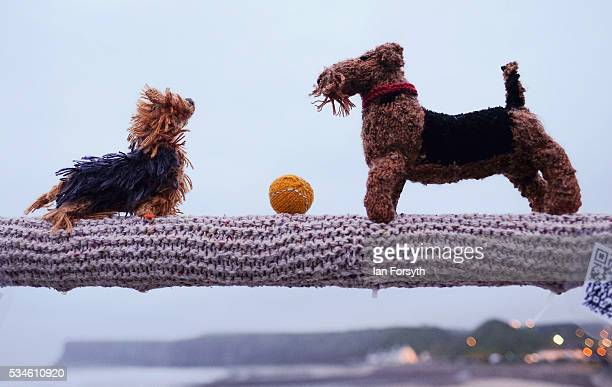 Yorkshire and an Airedale terrier are depicted by a secretive group of knitters known as the Saltburn Yarn Stormers have left a display of knitting...