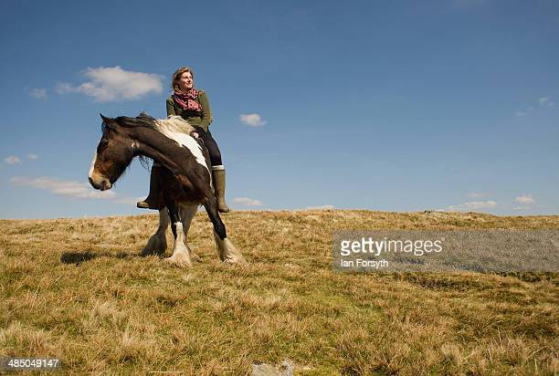 Yorkshire shepherdess Amanda Owen heads high onto the moors to feed the horses at Amanda's farm Ravenseat on April 15 2014 near Kirkby Stephen...