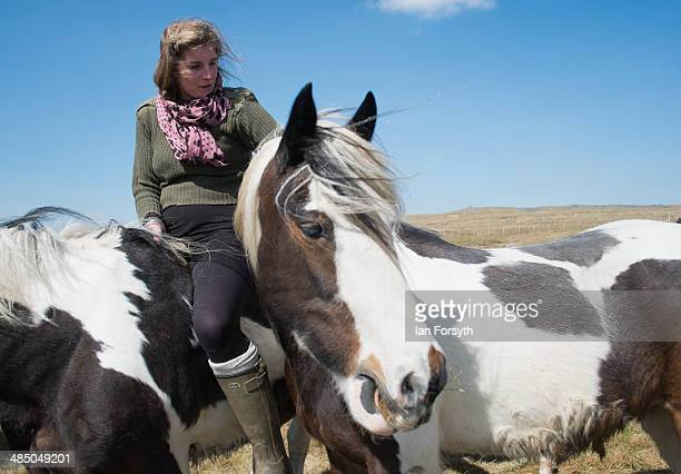 Yorkshire shepherdess Amanda Owen heads high onto the moors to feed the horses at Amanda's farm Ravenseat on April 15 2014 near Kirkby Stephen...