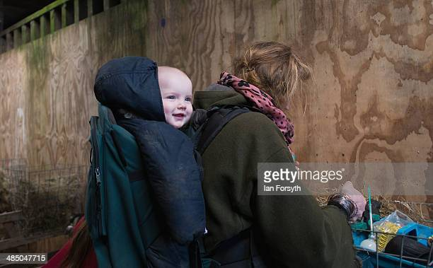 Yorkshire Shepherdess Amanda Owen prepares food and injections to give to new born lambs with her daughter Annas on April 15, 2014 near Kirkby...