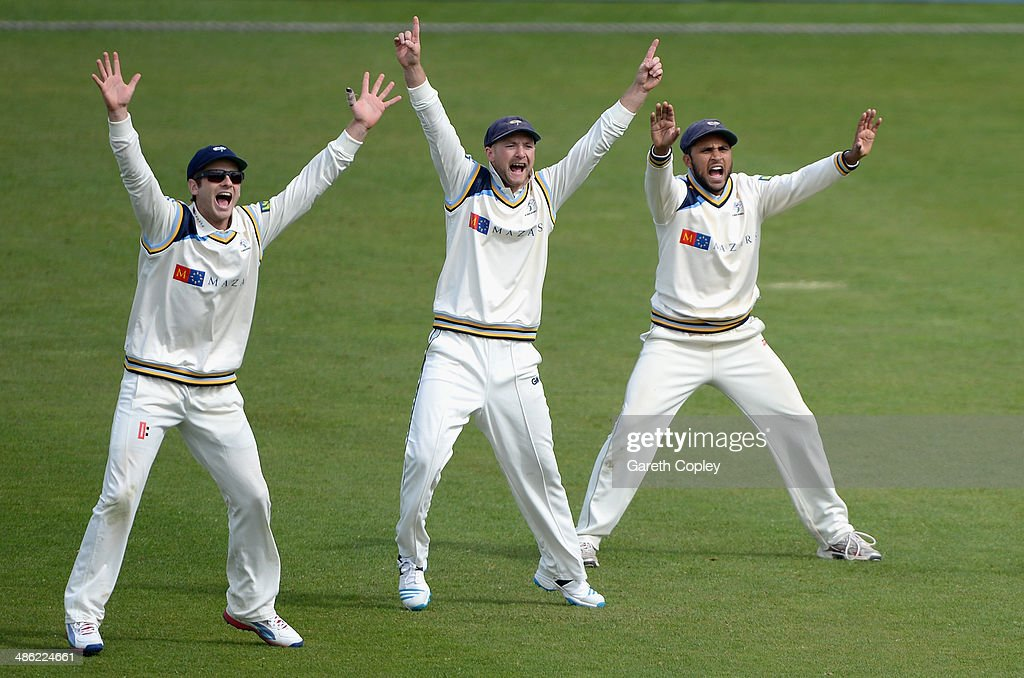 Yorkshire slipfielders Kane Williamson, Adam Lyth and Adil Rashid appeal during day four of the LV County Championship division One match between Yorkshire and Northamptonshire at Headingley on April 23, 2014 in Leeds, England.