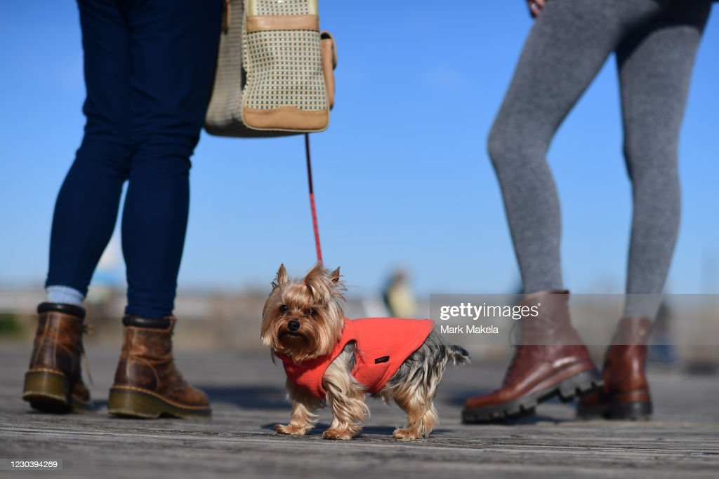 Rehoboth Beach Delaware Over New Year's Holiday : News Photo