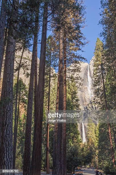 ヨセミテはヨセミテカリフォルニアの滝 - マーセド郡 ストックフォトと画像
