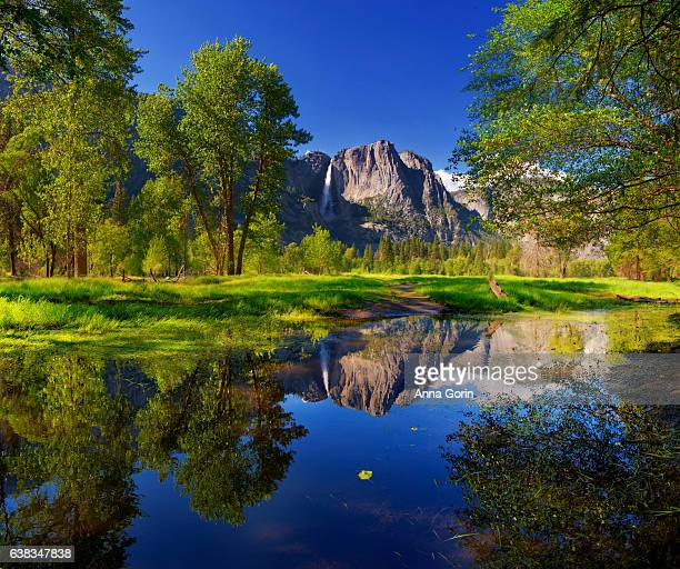 yosemite falls reflected perfectly in outlet of merced river by swinging bridge, summer afternoon in yosemite national park - paisagem espetacular - fotografias e filmes do acervo