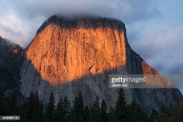 Yosemite National Park / El Capitan