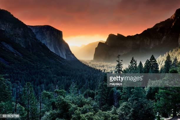 yosemite national park - yosemite nationalpark stock pictures, royalty-free photos & images