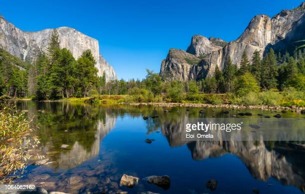 yosemite national park river reflection. california. usa - water's edge stock pictures, royalty-free photos & images